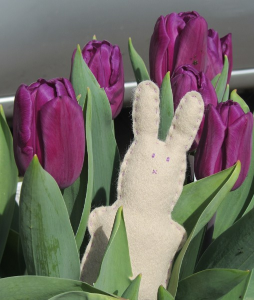 easter-bunny-cover1